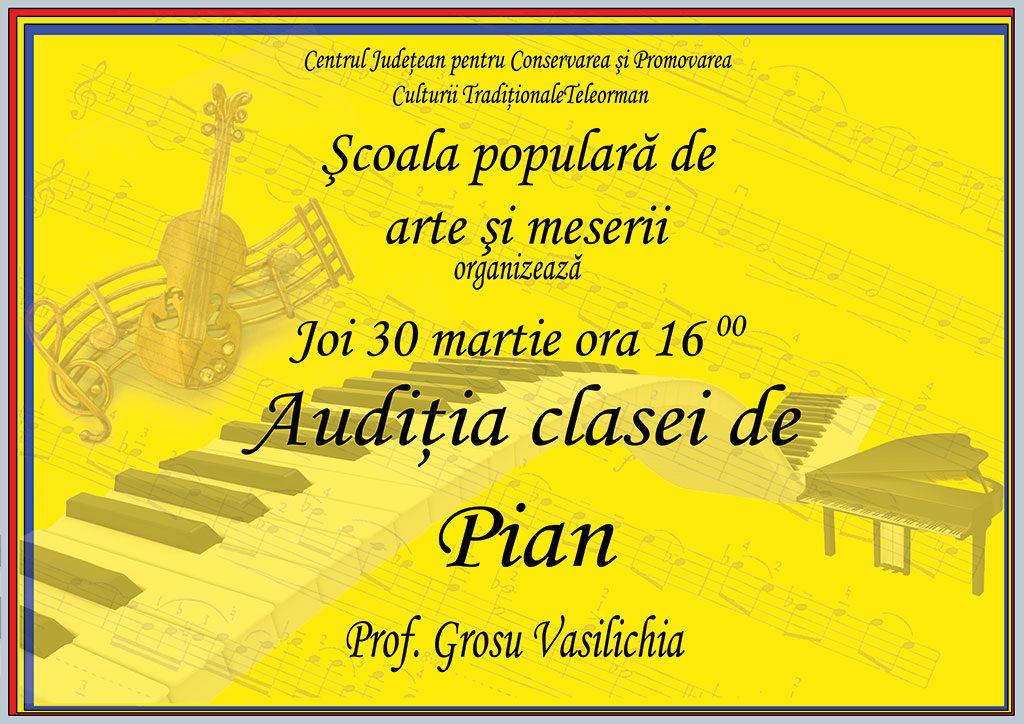 Auditii-pian-2017-Grosuop